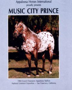 סוס ההרבעה אפלוסה הראשון בישראל music