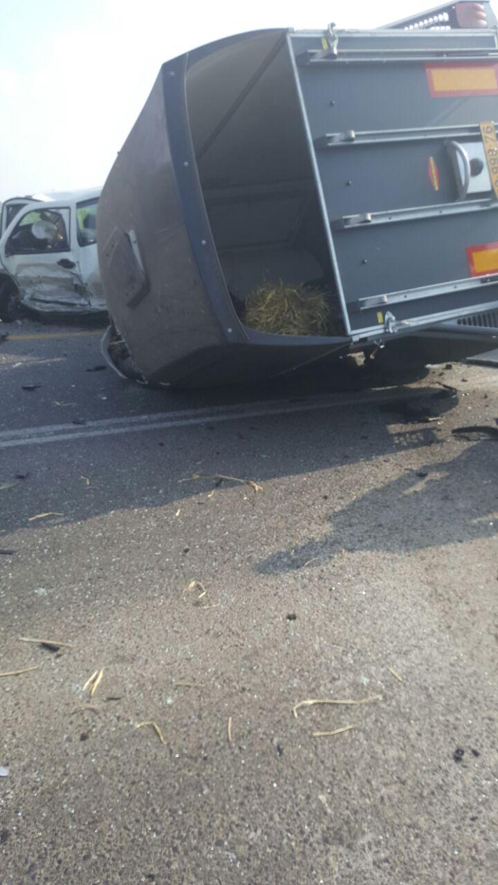 קרון סוסים מעורב בתאונת דרכים קשה