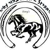 אליהו בכור עטיה מפרזל סוסים