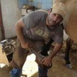 אלעד פינשטיין מפרזל סוסים