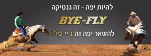 bye fly