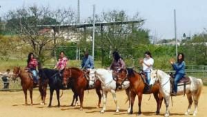 חוות סוסים רוכבים במושבה ,רכיבה טיפולית .