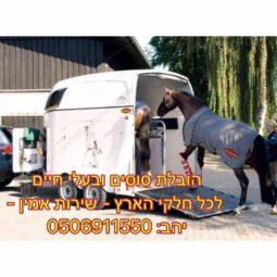 יהב רחמים הובלת סוסים ובעלי חיים