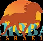 ארגון המגדלים ורוכבי סוסי הסינגל פוט בישראל
