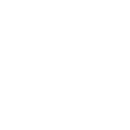 Dog-ma photography