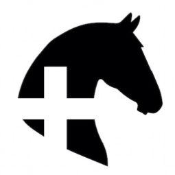 ד״ר יעל פורת- וטרינרית סוסים